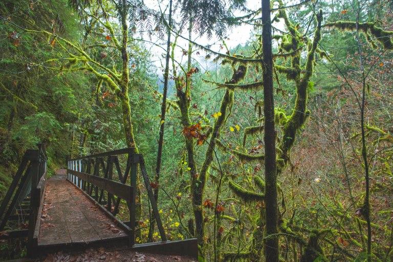 Eagle creek 11-4148