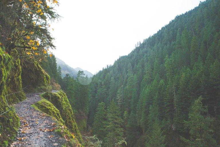Eagle creek 17-4062