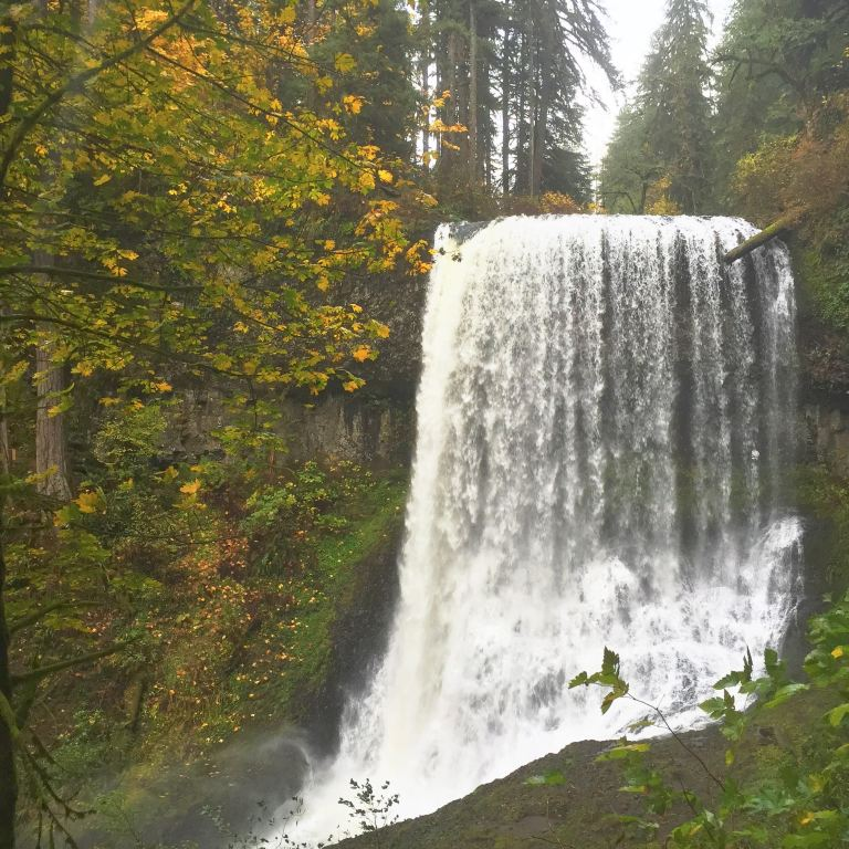 Silver falls- Middle falls